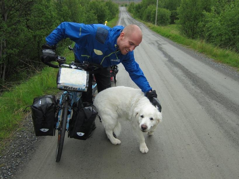 En hund sprang ut i vägen från en stuga