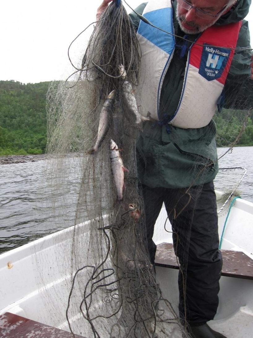 Harald visar upp sina fiskarkunskaper =)