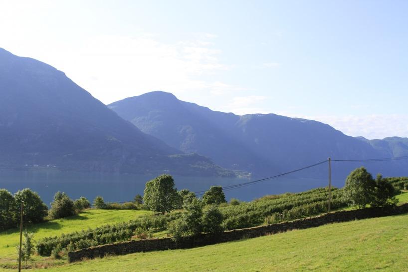 Efter en lång serpentinväg kom vi ner till Sognefjorden - kungen av fjordar!!