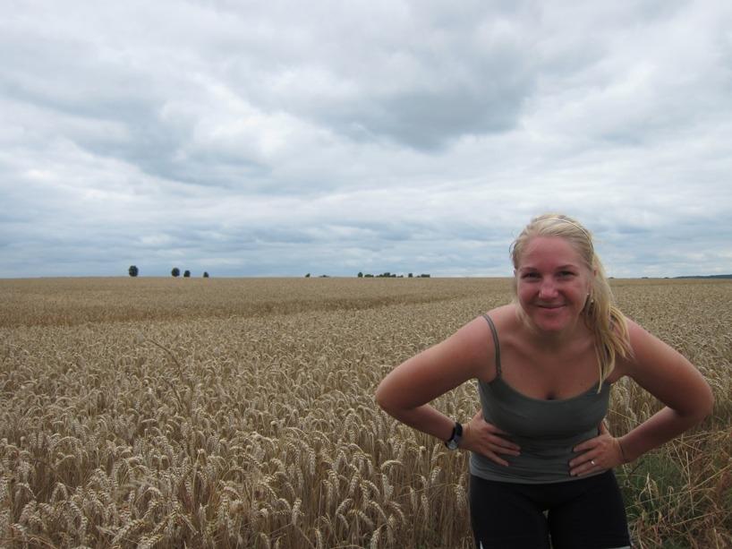 Sussies älskade fält!