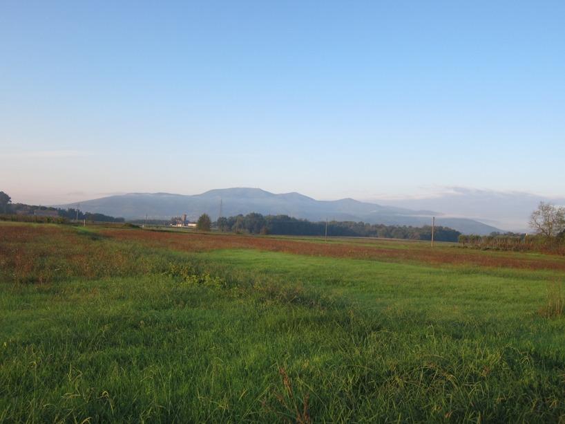Man börjar se hur naturen förändras nu när vi cyklat in i Toscana