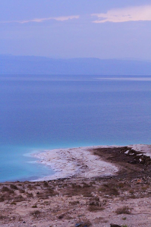 Längs strandkanten på Döda havet kan man se hur den höga salthalten har gjort strandkanten vit av salt.