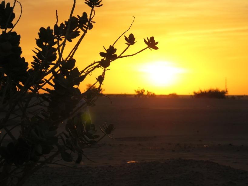 Magiska solnedgångar varje dag, i och med att det aldrig är ett moln på himlen :P