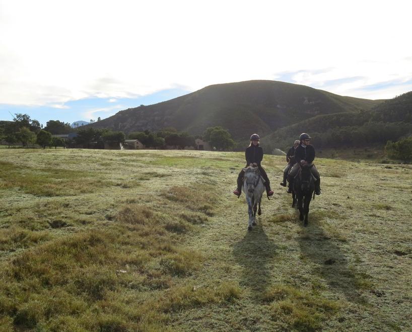 Vi alla njöt av tystheten när vi red genom området och skådade djuren från hästryggen!