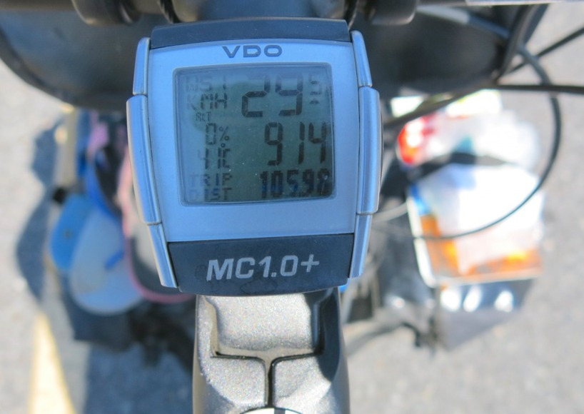 Det är varmt i Botswana. Mitt på dagen kryper termometerna upp till 45 grader...