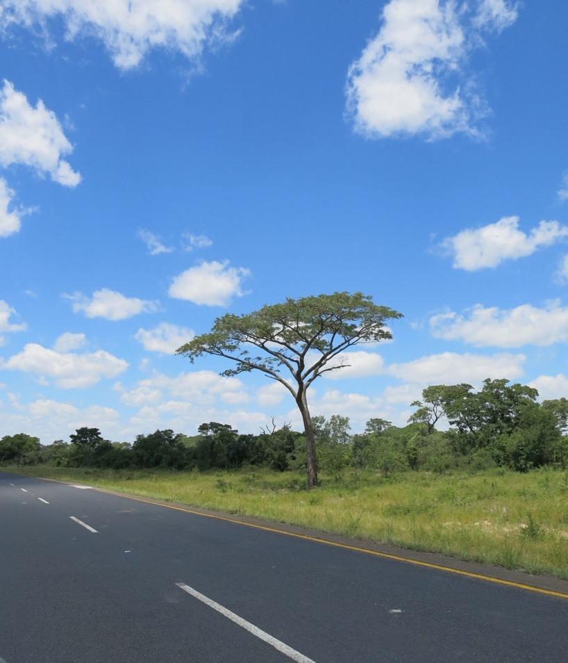 Botswanas himmel är verkligen blå!