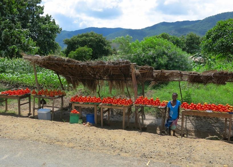 Nu får vi se vad grönsaksdisken kan erbjuda idag...jaja... tomater!