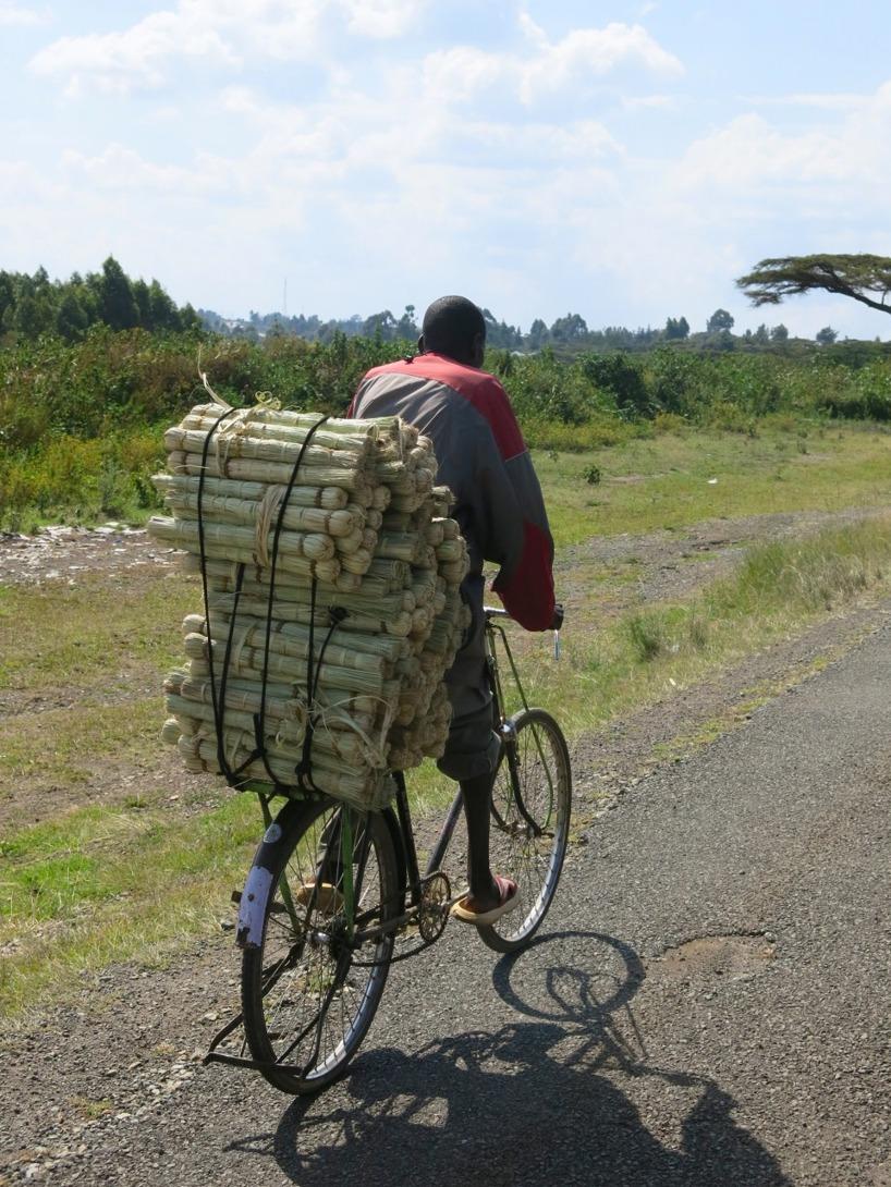 Cykeln är ett förträffligt fordon!