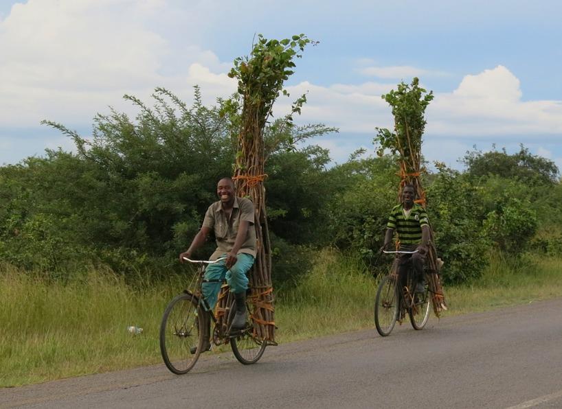 Människorna i Zambia är ett folk med breda leenden och nära till skratt!
