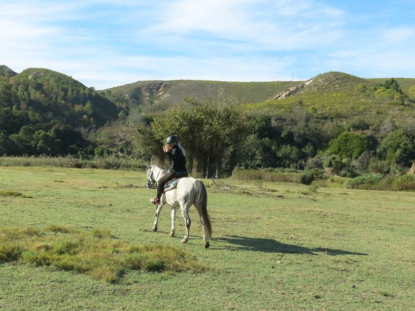 Safari på hästrygg!