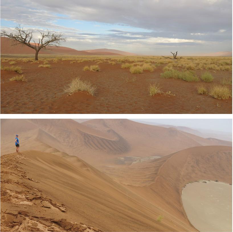 Sossusvlei i Namibia med sina stora sanddynor!