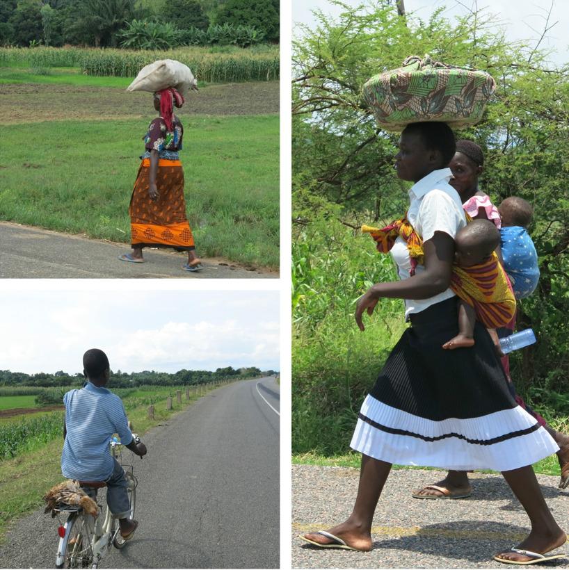 Det afrikanska livet efter vägen!