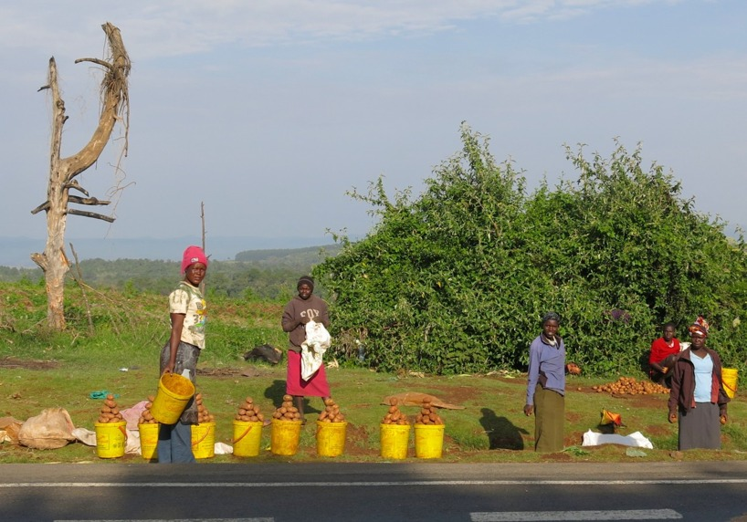 Längs vägen sålde de frusna kenyanska fruarna potatis i massor!