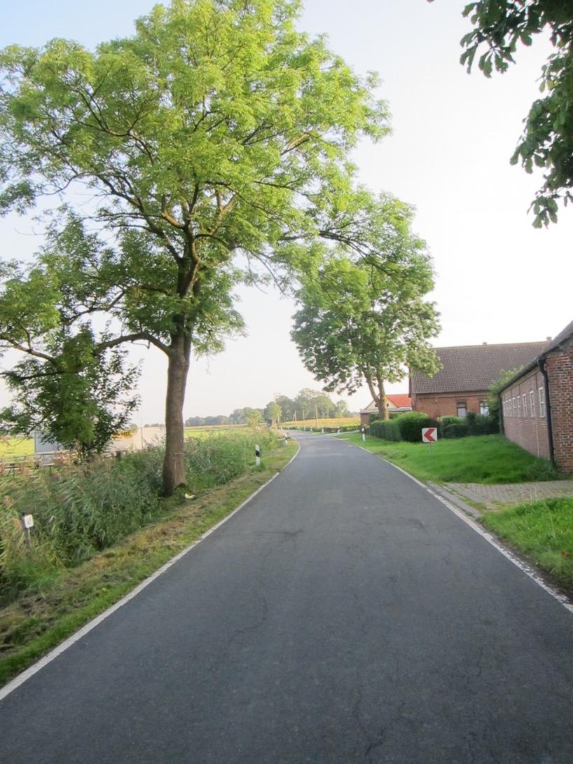 En väg genom böndernas landskap, där vi t.o.m såg personer ta sina åkgräsklippare till affären för att köpa öl... :P