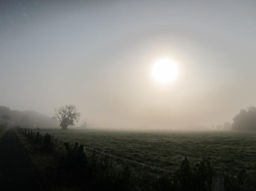 En tidig morgon efter en tuff natt med ekorren =)
