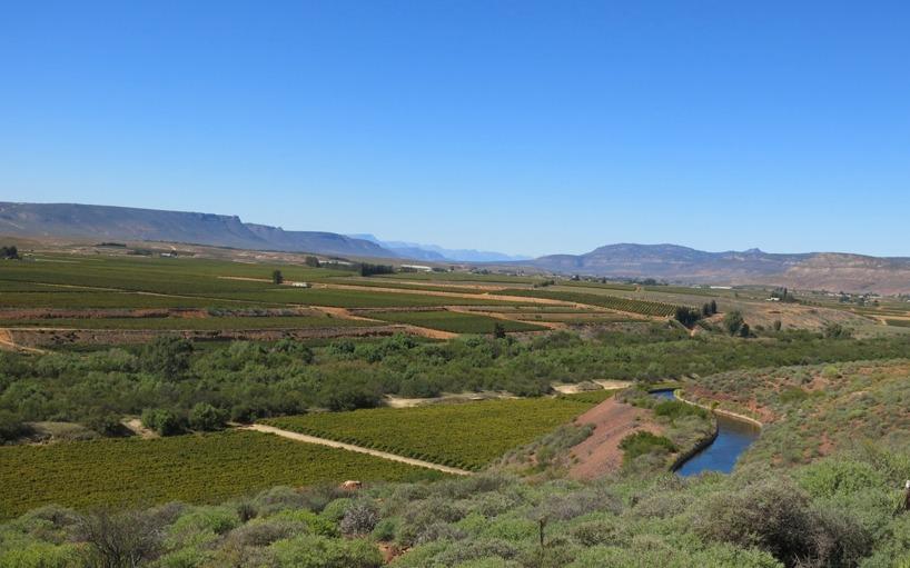 Det skedde en drastisk förändring i landskapet när vi nåde Olifant-River och öknen byttes mot detta!