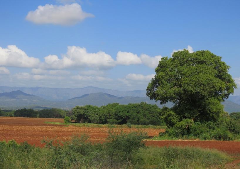 Afrikas röda jord och gröna slätter! Vackert!