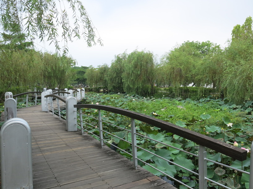 Fantastiskt vackra omgivningar kring Lotus Pond...