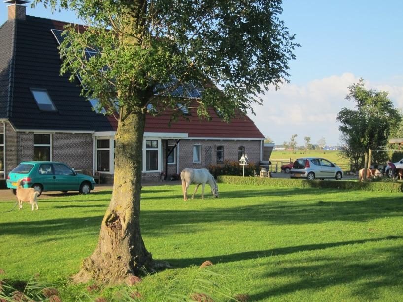 """En trädgård vi cyklade förbi hade en get, en häst, flera ponnys och massa höns framför huset. Riktig """"Pippi Långstrump-känsla"""" haha :)"""