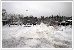 Vinter i Ramsdalen, fotograf Jimmy Ekman