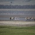 soda lake ngorongoro