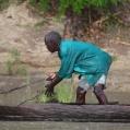 fiskare i Selous