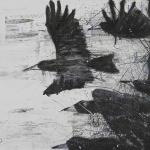 Orion Righard Black birds w 2