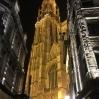 Katedralen by night