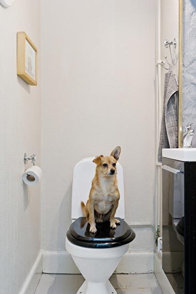 Toalett med tvättställ som ligger vid sovrummen i 1.etage.