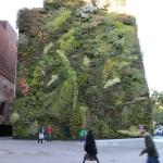 CaixaForum!!Det her er jo bare helt fantastisk! Stor applaus til Patrick Blanc! 250 forskjellige vekster på en og samme vertikale hage!