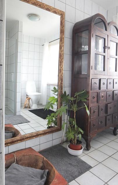 Bakom plantan finns vattenrör till ett eventuellt badkar. På bilden anar man duschdörren som vi installerade i år.