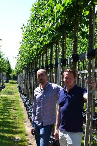 Victor Sundström & David Wiberg, Växtleverantörerna