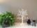 Vitt bordsträd