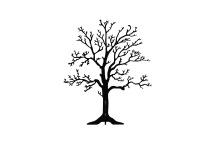 Träd på fot, Ek