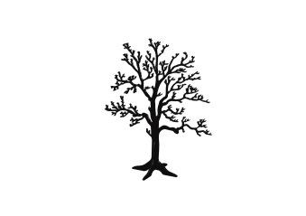 Träd på fot, Ek - Litet svart träd på fot