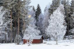 December 2018 Sparbanken Lidköpings almanacka