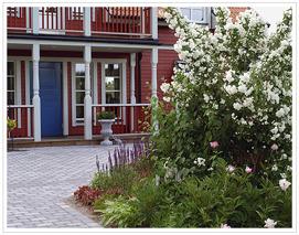 Rabatt vid entrén. Jasminen planterad 1920.