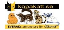 SVERAKs annonssida – för dig som vill köpa registrerad raskatt.
