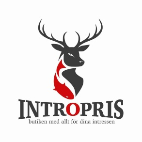 Årets huvudsponsor, Intropris
