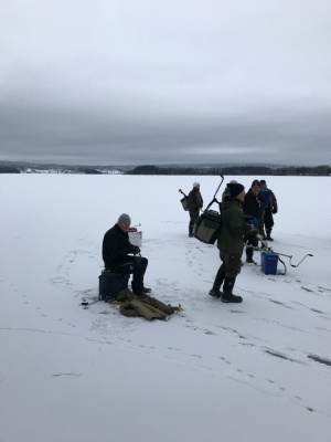 Startsugna pimplare på Fåsjön