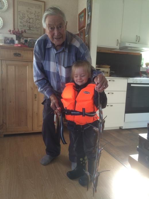 Folke med nästa generation storfiskare i Bromanssläkten. Barnbarnsbarnet Villy visar upp en sommarfångst.