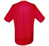 SPANIENs hemmatröja i Tysklands-VM 2006 rygg