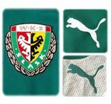 SLASK WROCLAWs förstatröja 2009 - 2010 detaljer
