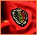 BELGIENs förstatröja i Brasilien-VM 2014 detaljer. Landslagsmärke