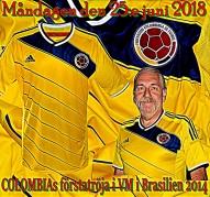 COLOMBIAs förstatröja i VM i Brasilien 2014
