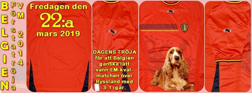 huge discount 7a26a ed10f Den är givetvis för segern i EM-kvalet mot Ryssland med 3-1. Egentligen  skulle jag haftden gula tröjan de spelade i igår, men den var tyvärr ...