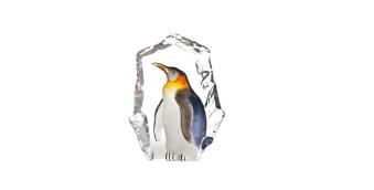 Målerås Wildlife Pingvin -