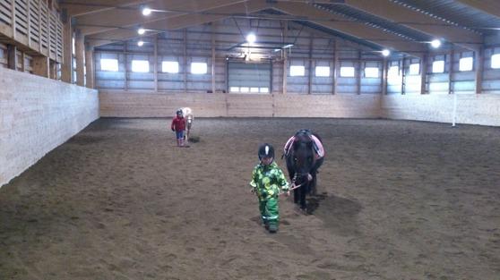 Barnbarnen Elsa och Wille med varsin ponny i körhallen!