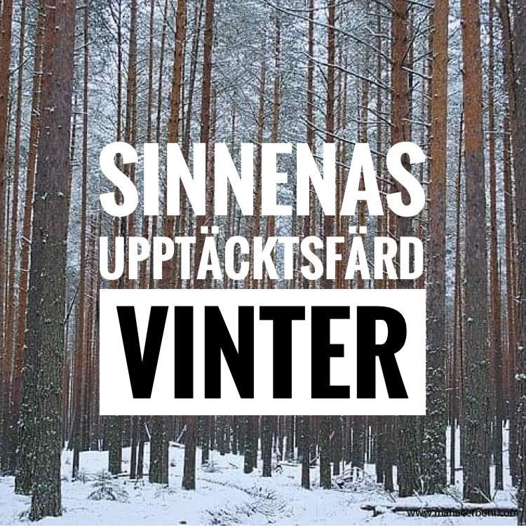 SINNENAS UPPTÄCKTSFÄRD - VINTER - 27 NOVEMBER 2021