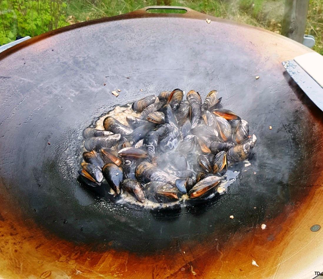 Stekhäll musslor